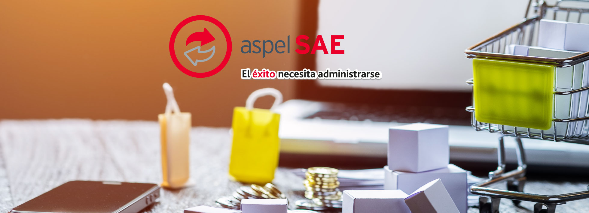 Reinstalable 05 aspel sae 8